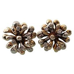 Firework earrings 1.jpg